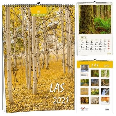 Kalendarz 2021 13 Plansz Las EV-CORP