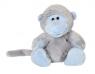 Niebieski nosek - pawian Giggles