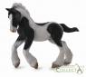 Koń rasy Tinker - źrebię maści srokatej M