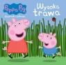 Peppa Pig. Książeczki z półeczki nr. 63.