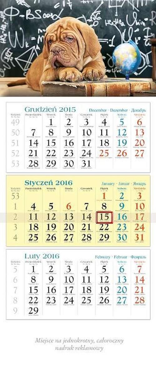 Kalendarz 2016 KT 20 Pies trójdzielny