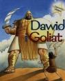 Opowieści biblijne Dawid i Goliat Morton Sasha