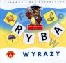 Wyrazy - Zabawka i gra edukacyjna (0371)
