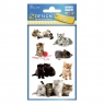 Naklejki dla dzieci Z Design - Kotki (55971)