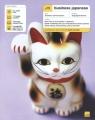 Business Japanese. 3 CD, booklet and culture book Kiyoko Naish, Sarah Carroll