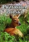 Mini album - Przyroda Polska