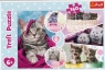 Puzzle 160: Urocze kotki