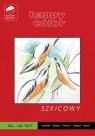 Blok szkicowy Młody Artysta A4/50