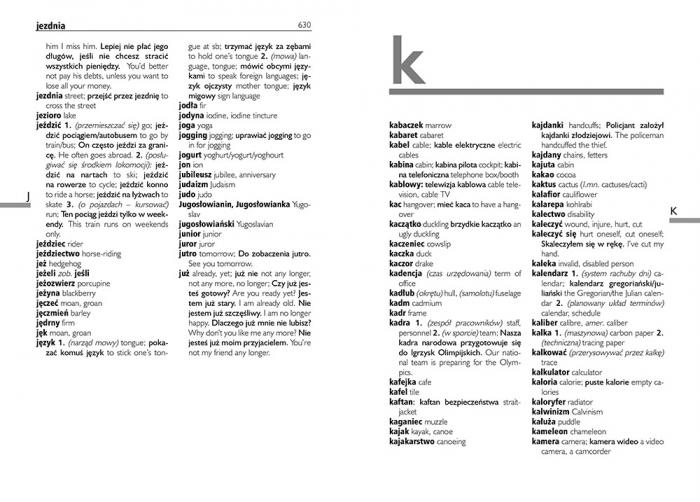 Słownik angielsko-polski, polsko-angielski 3w1 Agnieszka Markiewicz, Geraldina Półtorak, Olga Raźny, Katarzyna Sanetra, Jacek Paciorek