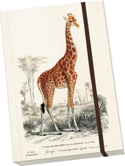 Notatnik ozdobny A5 STNOTE 71 Żyrafa