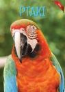 Encyklopedia Fakty Ptaki