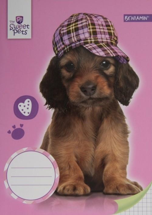 Zeszyt A5 Sweet pets w kratkę 16 kartek Pies