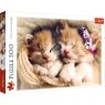 Puzzle 500: Śpiące kotki (37271)