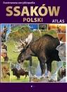 Ilustrowana encyklopedia ssaków Polski