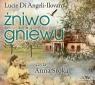 Żniwo gniewu  (Audiobook) Angeli-Ilovan Lucie