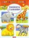 Zwierzęta z sawanny. Obrazkowy świat