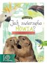 Jak zwierzęta mówią?