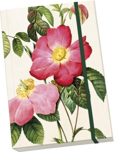 Notatnik ozdobny A5 STNOTE 72 Róże