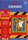 Blok rysunkowy A4 Canson z kolorowymi kartkami 10 kartek Tygrys