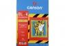 Blok rysunkowy Canson kolorowy A4 80g 10ark (tygrys) (400075200)
