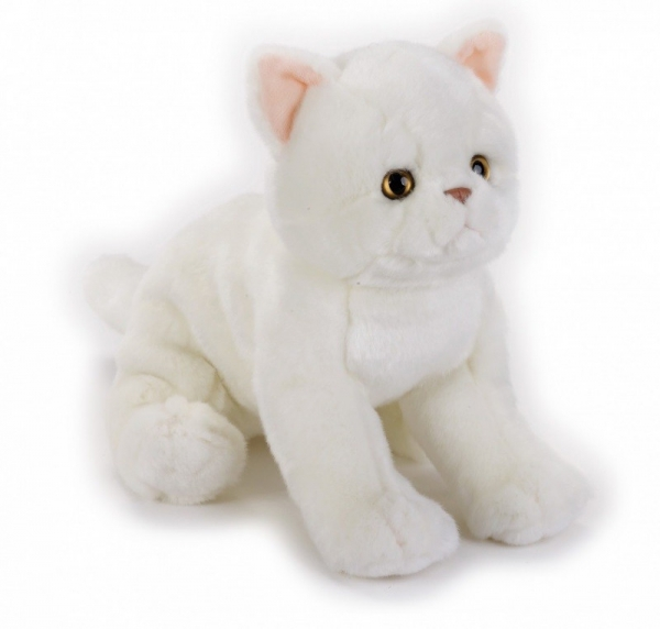 Pluszak Kot egzotyczny National Geographic (003-70672)