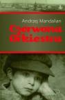 Czerwona orkiestra Mandalian Andrzej