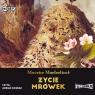 Życie mrówek  (Audiobook) Maeterlinck Maurice