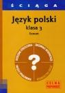 Ściąga Język polski 3