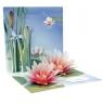 Kartki 3D - Water Lily
