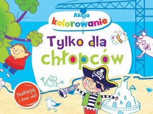 Akcja kolorowanie! Tylko dla chłopców. Naklejaj i baw się! (Uszkodzona okładka) Anna Wiśniewska
