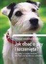 Jak dbać o psy i szczenięta? Chcesz wiedzieć więcej?Wszystko, co
