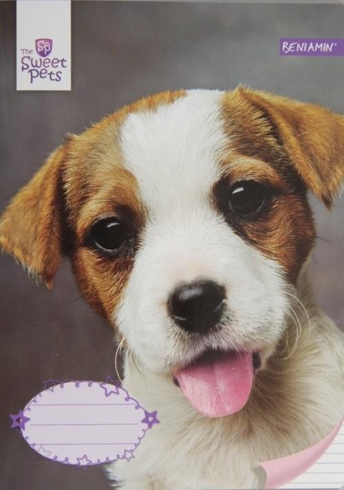 Zeszyt A5 Sweet Pets w linie 32 kartki Pies mix