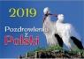 Kalendarz 2019 Ścienny - Pozdrowienia z Polski