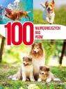 100 najpiękniejszych ras psów Nojszewska Agnieszka
