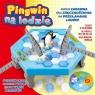 Pingwin na lodzie