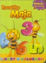 Pszczółka Maja. Nauka dla zucha. Liczby w kolorach praca zbiorowa