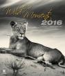 Kalendarz 2016 Dzikie Momenty Helma EX