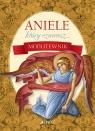 Aniele który czuwasz... Modlitewnik