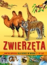 Encyklopedia Zwierzęta (Uszkodzona okładka)