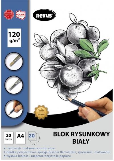 Blok rysunkowy A4/20K biały Premium
