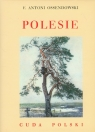 Polesie Cuda Polski