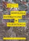 Morfologia matematyczna w teledetekcji Kupidura Przemysław, Koza Piotr, Marciniak Jacek