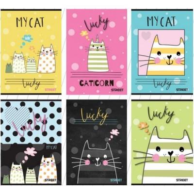 Zeszyt A5 My Cat w kratkę 54 kartki 10 sztuk mix