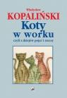 Koty w worku, czyli z dziejów pojęć i rzeczy Kopaliński Władysław