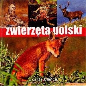 Zwierzęta Polski praca zbiorowa