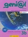 Genial 3B Kompakt podręcznik z ćwiczeniami z płytą CD dla początkujących i kontynuujących naukę