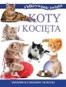 Koty i kocięta Wskazówki dla opiekunów i właścicieli