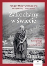 Zakochany w świecie. Mądrość buddyjskiego mnicha o życiu i śmierci