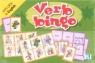 Verb Bingo - Gra językowa