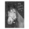 Błyszczący pamiętnik Paso Horse